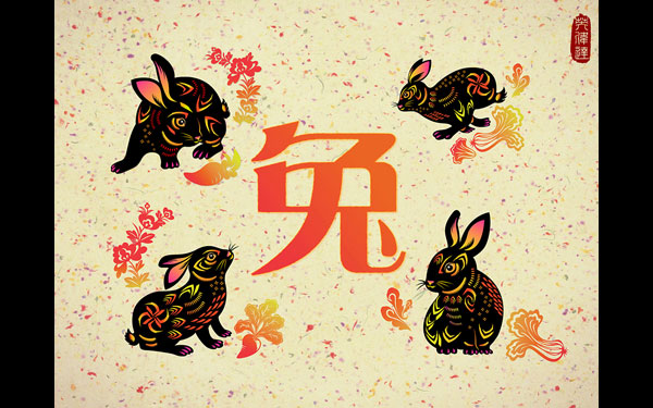 NVIDIA Year of the Rabbit